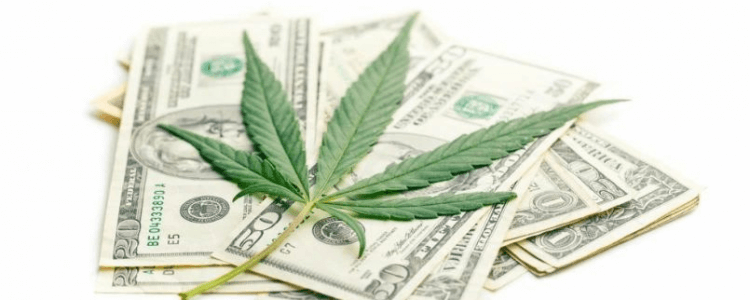 The-Cost-of-Medical-Marijuana-in-New-York