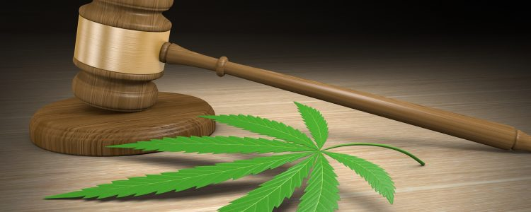 Legal Marijuana or IoT (The Internet of Things)- which is Larger
