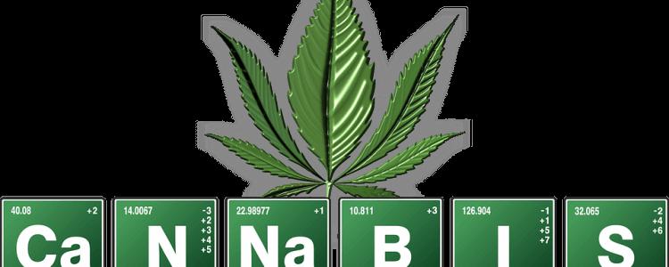 10 Important Medical Facts Of Marijuana