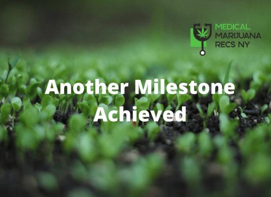 Constantly Climbing – Medical Marijuana Recs NY Hits 600 Client Milestone